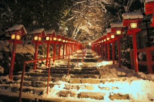 Japanese Lantern Winter